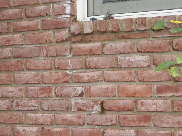 Οι μέλισσες έμπαιναν μέσα στον τοίχο μέσω μιας μικρής τρύπας ανάμεσα στα τούβλα αλλά και από ένα κενό ανάμεσα στα τούβλα και την γωνία του παραθύρου.