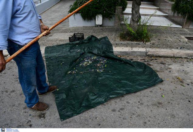 Εφοδιασμένος με όλα τα «σύνεργα» της συγκομιδής ελιάς -Φωτογραφία: Intimenews/ΠΑΝΑΓΙΩΤΟΠΟΥΛΟΣ ΝΙΚΟΣ