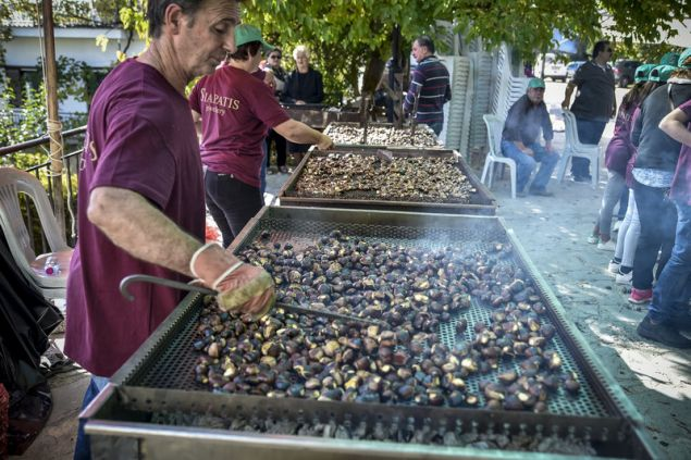 Πολιτιστικός Σύλλογος Ροδαυγής σε συνεργασία με την Τοπική Κοινότητα, το Σύλλογο ΓυναικΣτην πλατεία του χωριού Ροδαυγή, η εντυπωσιακή γιορτή - EUROKINISSI/ΓΙΩΡΓΟΣ ΕΥΣΤΑΘΙΟΥ