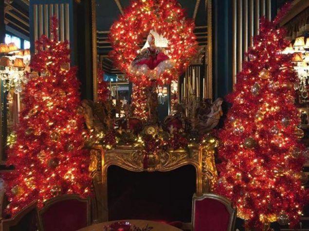 Κόκκινα χριστουγεννιάτικα δέντρα σε ταξιδεύουν στην μαγεία των γιορτών