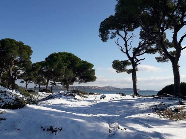 Οι αμμόλοφοι έχουν καλυφθεί από το χιόνι / Φωτογραφία: Facebook/Popi Hatzidimitriou