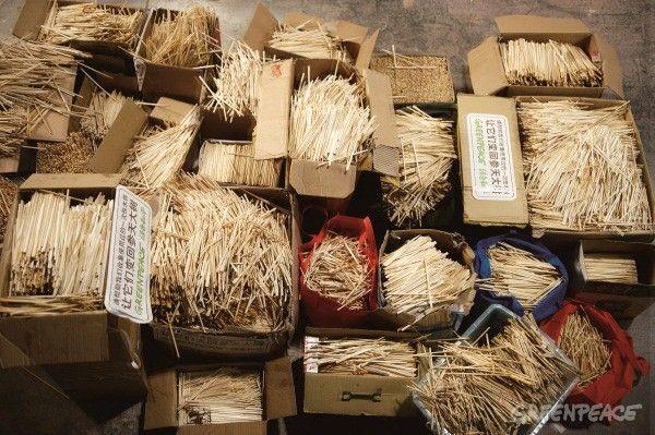 Διακόσιοι εθελοντές συγκέντρωσαν 80.000 χρησιμοποιημένα chopsticks και τα μετέτρεψαν πάλι σε δέντρα